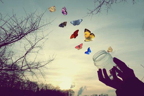 Dag kleintje – Over klein leven en groot verdriet